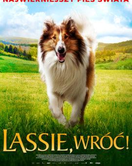 Lassie, wróć!